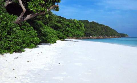 остров тачай в таиланде